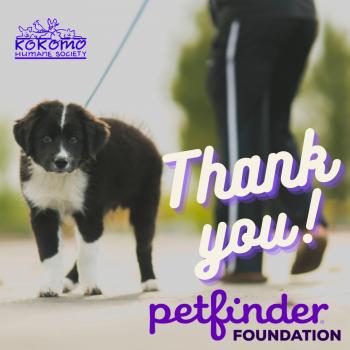 Petfinder Foundation Thank you