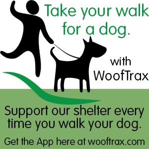 Walk a dog app